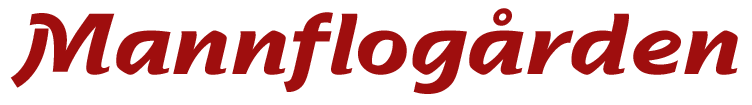 Mannflog_logo